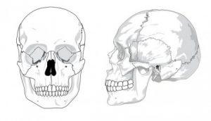 頭蓋骨の歪みを矯正